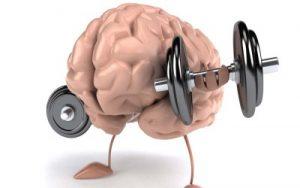Aktivnost dlja mozga