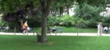 Progulka po parku