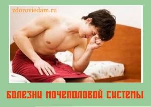 bolezni-mochepolovoi-sistemy