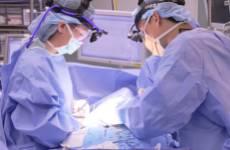 giperparatireoz-operacija