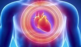 kardiogennyj-shok-porazenie-serdtca