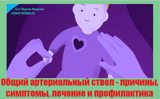 obshhij-arterialnyj-stvol