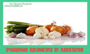 ochishhenie-organizma-ot-parazitov