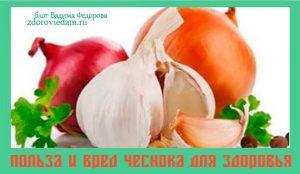 polza-i-vred-chesnoka-dlya-zdorovya