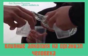 vliyanie-alkogolya-na-organizm-cheloveka